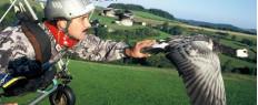 Voler avec les oiseaux en ULM en Auvergne
