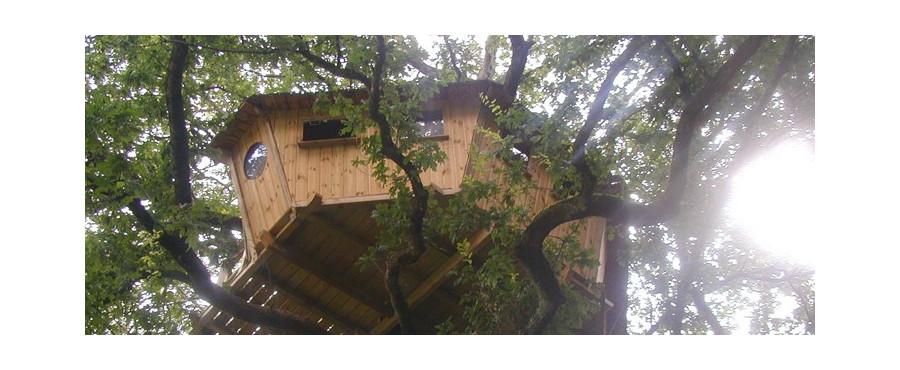 week end dans une cabane dans les arbres dans le morbihan. Black Bedroom Furniture Sets. Home Design Ideas