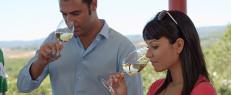 Excursion oenologique (Barcelone) - vins d'Espagne et Cava