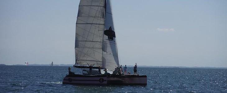 Sortie en mer dans le Golfe du Morbihan en catamaran