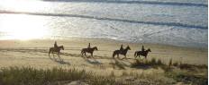 Randonnée à cheval dans le Médoc Aquitaine