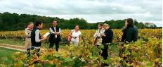 Dégustation de vins et visite de vignoble proche Tours