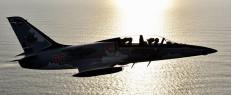 Vol en avion de chasse L-39 La Roche sur Yon
