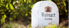 Visite et dégustation Champagne Ruinart Reims