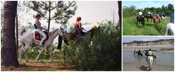 Week-end randonnée à cheval Médoc Aquitaine